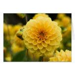 Gelbe Dahlie Grußkarte
