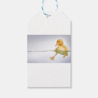 Gelbe Entlein-Schwimmen Geschenkanhänger