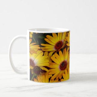 Gelbe Gänseblümchen-Blumen im Frühling Kaffeetasse