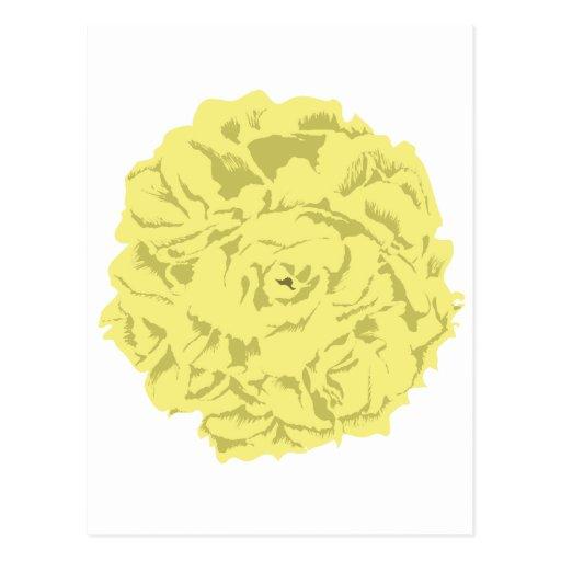 gelbe Gartennelken-Blume Postkarten