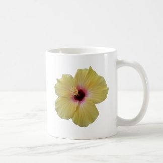 Gelbe Hibiskus-Blume Kaffeetasse