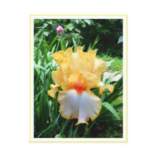 Gelbe Iris-Blumen-Garten-Leinwand-Druck Leinwanddruck