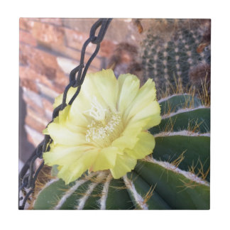 Gelbe Kaktus-Blume Keramikfliese