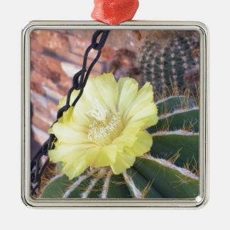 Gelbe Kaktus-Blume Silbernes Ornament