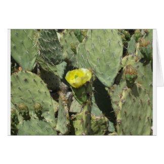 Gelbe Kaktusfeige-Blüte Karte