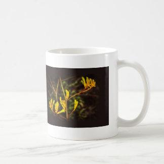 Gelbe Känguru-Tatzen-Blume Kaffeetasse
