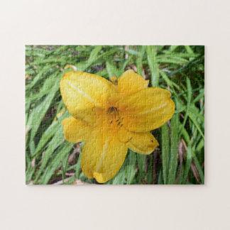 Gelbe Lilie herauf nahes Fotopuzzlespiel Puzzle