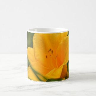 Gelbe Lilie in der Blüte Tasse