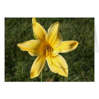Gelbe Lilie Grußkarte