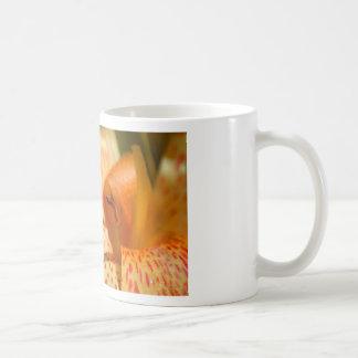 Gelbe Lilie Kaffee Tassen