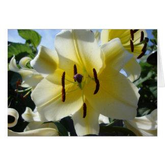 Gelbe Lilien-Raum-Gruß-Karte Grußkarte