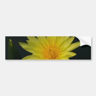 Gelbe Lotos-Wasserlilie Autoaufkleber