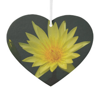Gelbe Lotos-Wasserlilie Lufterfrischer
