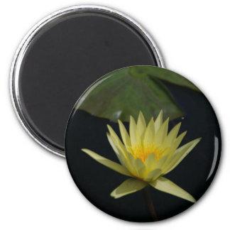 Gelbe Lotos-Wasserlilie Runder Magnet 5,7 Cm