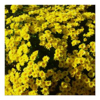 Gelbe Mama-Blumen-perfektes Plakat Poster