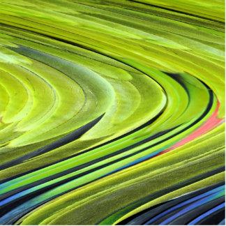 Gelbe-Naped Amazonas-Papageien-Federn durch Fotoskulptur Magnet