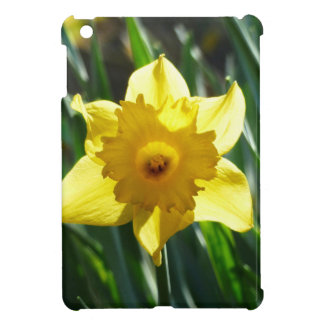 Gelbe Narzisse 03.0.g iPad Mini Hülle
