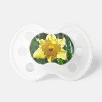 Gelbe Narzisse 03.0.g Schnuller