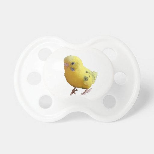 Gelbe Parakeet-Fotografie Schnuller