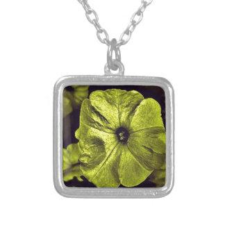 Gelbe Petunie flower.jpg Digital Versilberte Kette