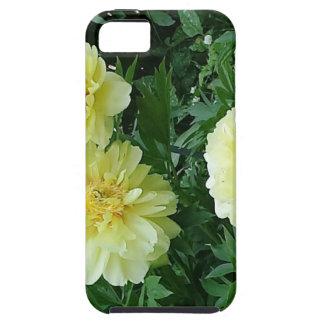 Gelbe Pfingstrosen so hell, dass sie wirklich iPhone 5 Schutzhülle