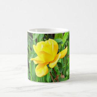 Gelbe Rose auf grüner Kaffeetasse/Tasse Kaffeetasse
