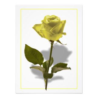 Gelbe Rose der Freundschaft Foto Drucke
