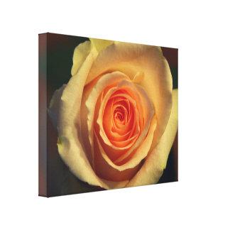Gelbe Rose eingewickelte Leinwand