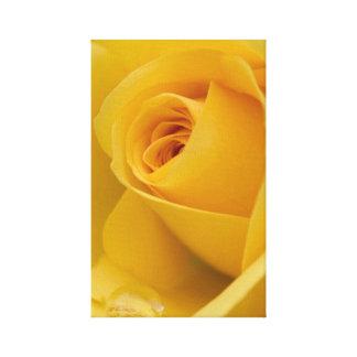 Gelbe Rosen-Blume Leinwanddruck