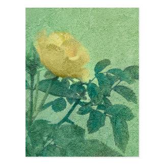 Gelbe Rosen-Vintages Art-Foto Postkarte