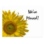 Gelbe Sonnenblume-Adressenänderung Postkarte