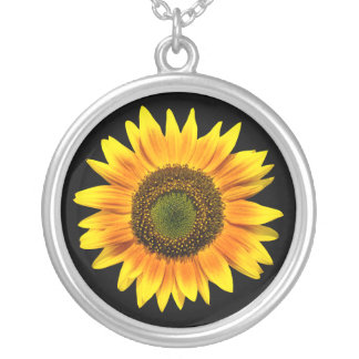 Gelbe Sonnenblume-Foto-Silberhalskette Versilberte Kette