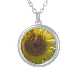 Gelbe Sonnenblume Versilberte Kette