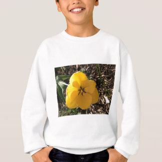 Gelbe Tulpe Sweatshirt