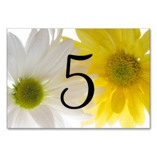 Gelbe und weiße Gänseblümchen-Tischnummern Karte
