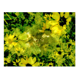 Gelbe wilde Blume (Halbtonpunkt-Muster) Postkarte