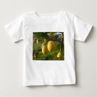 Gelbe Zitronen, die auf dem Baum am Baby T-shirt