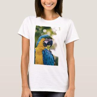 Gelber blauer Macaw-Papagei T-Shirt