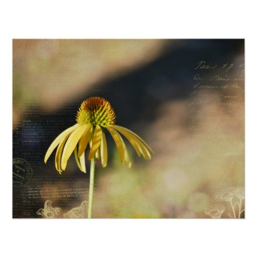 Gelber Echinacea Plakat