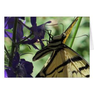 Gelber Frack-Schmetterling Karte