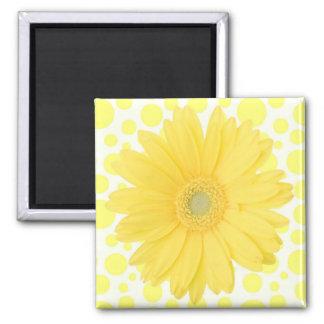 Gelber Gänseblümchen-Magnet Quadratischer Magnet
