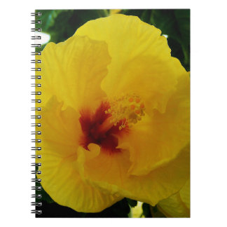 Gelber Hibiskus Hawaii Spiral Notizblock