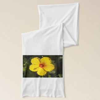 Gelber Hibiskus-Schal Schal