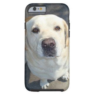 Gelber Labrador iPhone Fall Tough iPhone 6 Hülle
