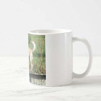 Gelber Labrador Kaffeetasse