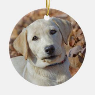 Gelber Labrador retriever-Welpe Keramik Ornament