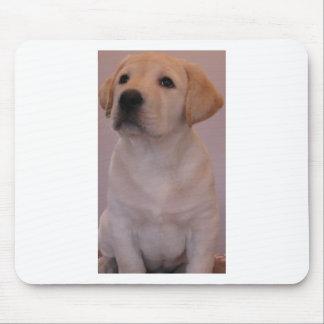 Gelber Labrador retriever-Welpe Mousepad