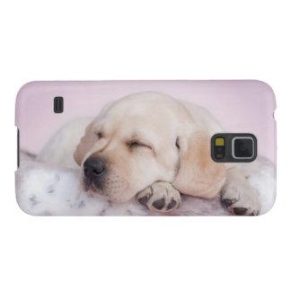 Gelber labrador retriever-Welpe Samsung Galaxy S5 Cover