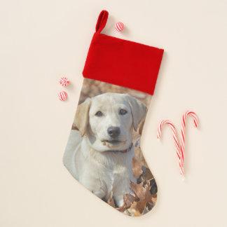 Gelber Labrador retriever-Welpe Weihnachtsstrumpf