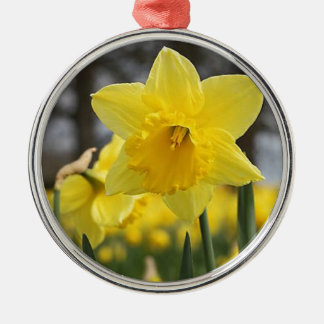 Gelber Lilly Silbernes Ornament